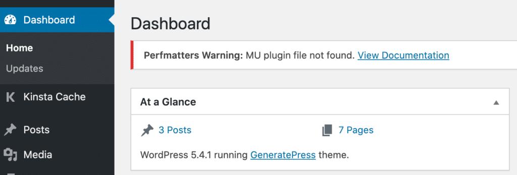 Perfmatters MU plugin file not found