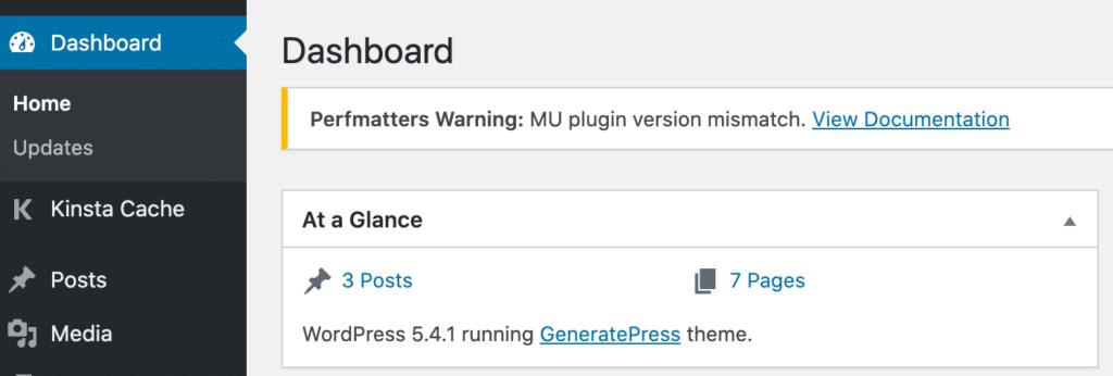 Perfmatters MU plugin version mismatch