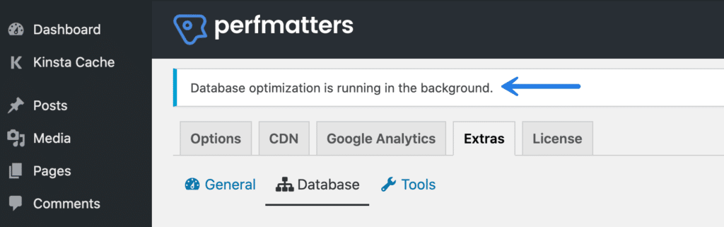 Perfmatters database optimization running