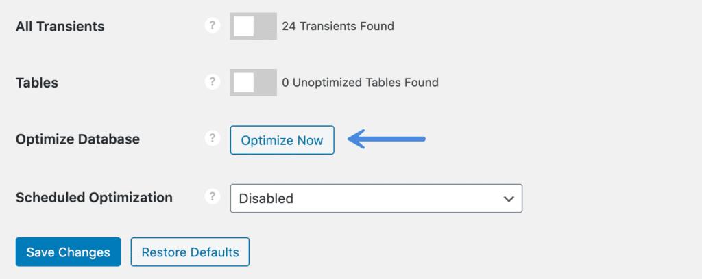 Perfmatters Optimize Now