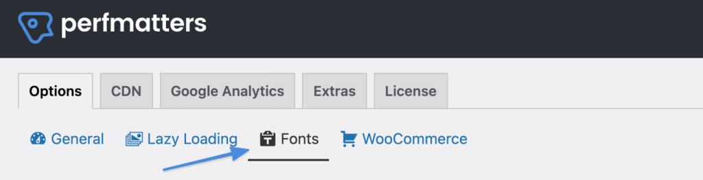 Perfmatters fonts